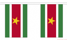 SURINAME BUNTING - 3 METRES 10 FLAGS